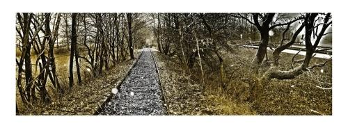 Schienen auf dem Land (http://img.fotocommunity.com/images/Landschaft/Wege-und-Pfade/Schienen-auf-dem-Land-a23892170.jpg)